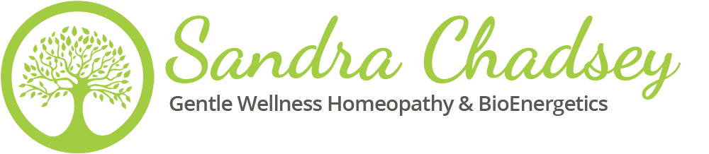 Fever's and Homeopathic Treatment Options | Sandra Chadsey
